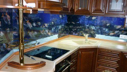 Гомельчанин захотел себе аквариум на всю стену за $3800, а тот начал предательски хрустеть. Один день из общества защиты потребителей