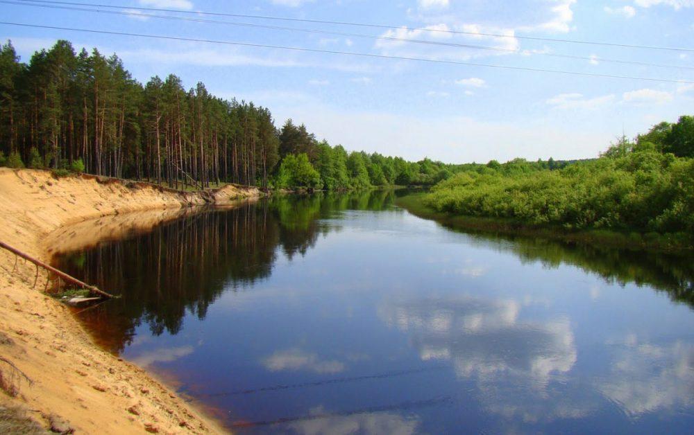 В Речицком районе ищут мужчину и 11-летнюю девочку, которых унесло на Березине течением