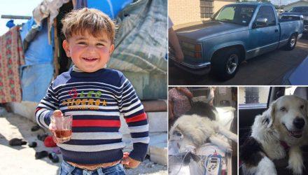 """""""Я продала машину, чтобы оплатить операцию своей собаке"""". 15 сильных фото про то, что в этом мире ещё не всё потеряно"""