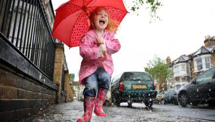 Возможны дожди и грозы. Погода в Гомеле на выходных