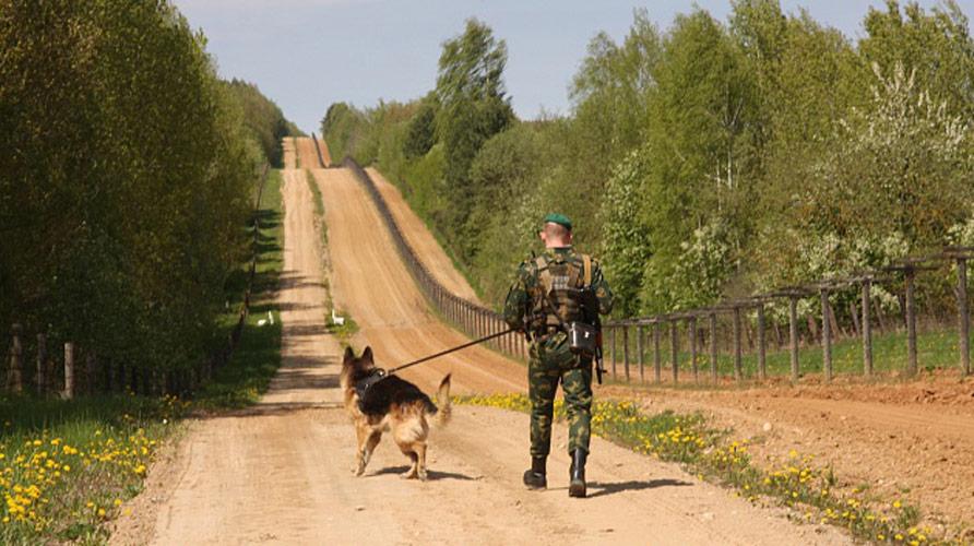 Украинцы устремились на Гомельщину. Пограничники задержали трудового мигранта и парня на Range Rover с поддельным паспортом
