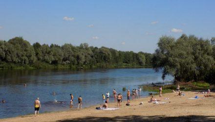 ОСВОД: люди сознательно нарушают запрет о купании