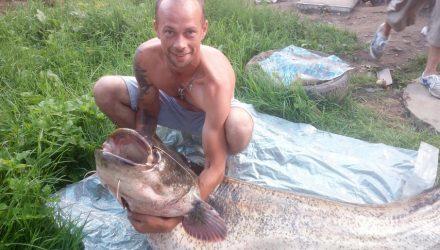 «Ловили больше часа на жареного воробья». Белорусские рыбаки выловили 50-килограммового сома
