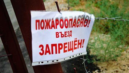 В Гомельском и Добрушском районах введён запрет на посещение лесов