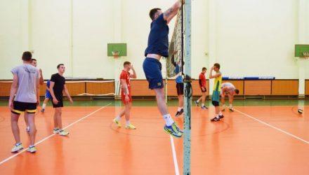 Спустя 4 года в Гомель вернулся мужской профессиональный волейбол