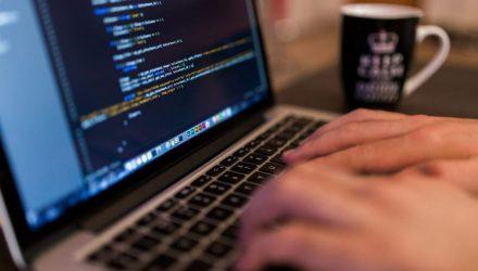 ГГУ имени Ф. Скорины приглашает гомельчан на бесплатные IT-уроки