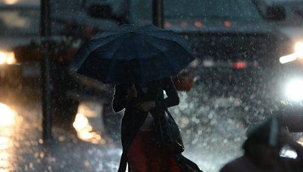 Местами с дождями – это про Гомель. Погода в выходные