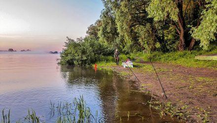 В Речицком районе на берегу Днепра рыбак-гомельчанин нашёл человеческий череп в шапке