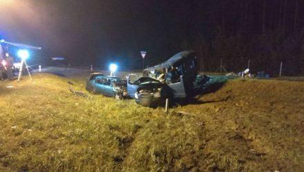 Ужасная авария на гомельской трассе: два человека погибли, восемь пострадали