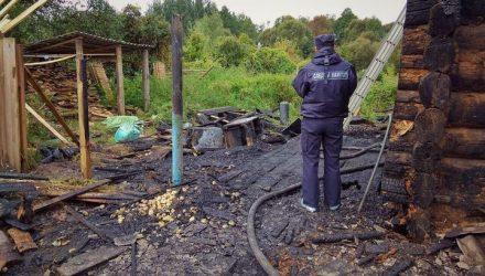 Трагедия... Под Рогачёвом на пожаре погиб 3-летний ребёнок