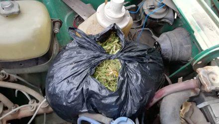"""В Гомеле ОМОН задержал индивидуального предпринимателя и его друга, которые перевозили под капотом """"Жигулей"""" полтора килограмма марихуаны"""