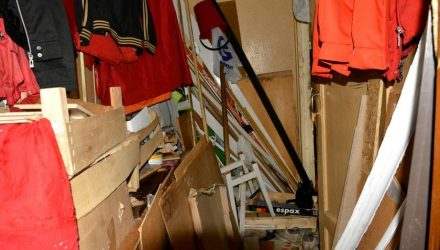 Нескучные соседи в Гомеле: комиссия наведалась к бывшему алкоголику, кошатнице и сборщице мусора