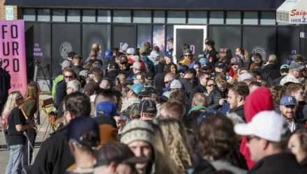 Фотофакт: очереди за марихуаной в Канаде в первый день её легализации