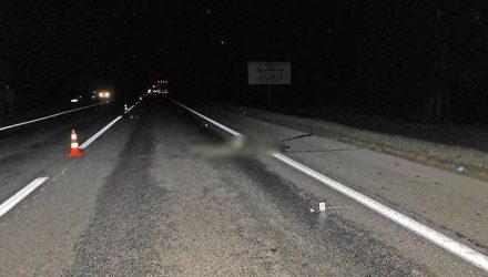 Солдат ночью выбежал под фуру на витебской трассе и погиб