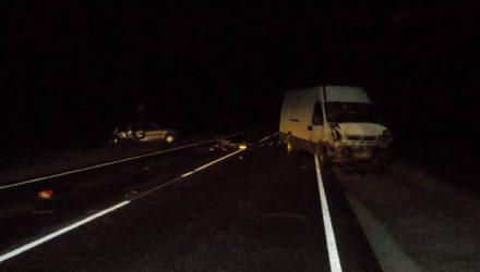 В Лельчицком районе девушка на Fiat не вошла в поворот и врезалась в микроавтобус – погибла пассажирка легковушки