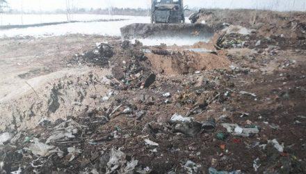 Под Гомелем отчитались о ликвидации свалки и высадили лес, но местные недовольны: мусор закопали