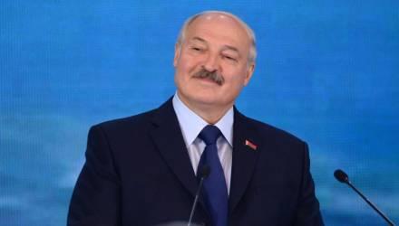 Овцы и коррупция: яркие цитаты Лукашенко в Витебске