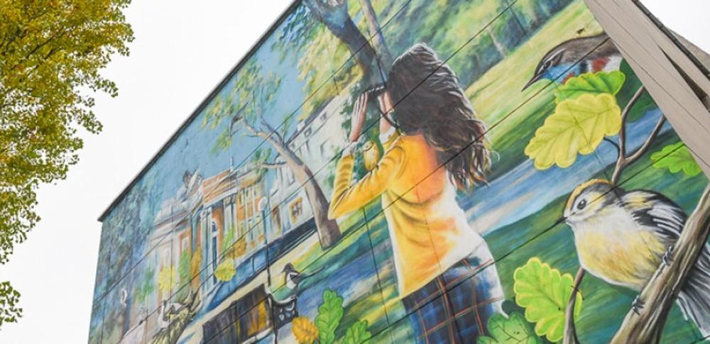 Граффити «Будь здоров с птицами» создано на стене школы Гомеля