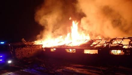 В Гомельском районе сгорел склад пилорамы – подозревают поджог