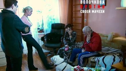 """""""Пинай себя по голове!"""" Самбурская оскорбила Волочкову, ударившую собаку в эфире"""