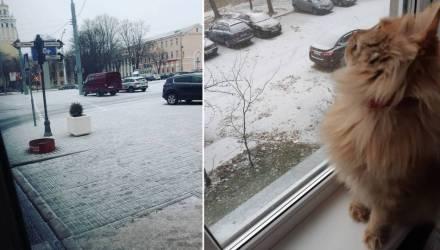 В Гомеле пошёл первый снег