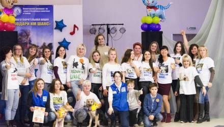 """""""Подари им шанс"""". В ГЦК волонтёры отдавали в хорошие руки бездомных животных (фото)"""