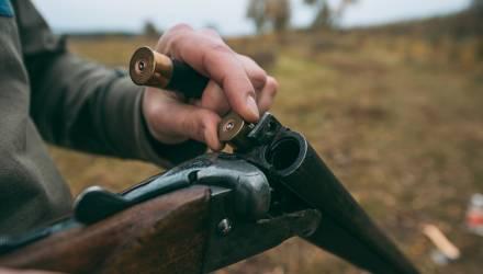 В Гомеле судят бывших природоохранных инспекторов, которые за взятки покровительствовали браконьерам