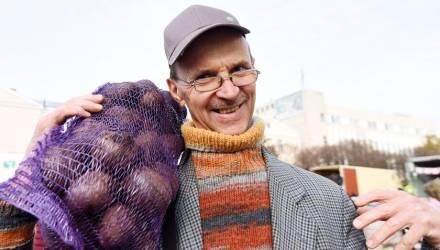 Картошка, мёд и фейхоа: что закупают гомельчане на зиму