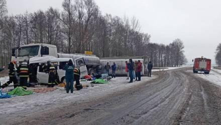 На микроавтобусе была летняя резина. В ГАИ рассказали подробности смертельной аварии на Гомельщине, в которой погибли 5 женщин