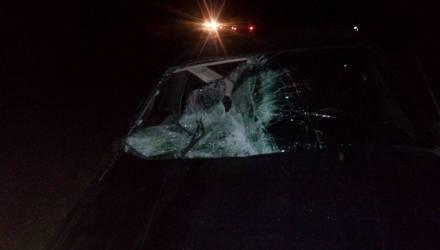 В Ельском районе под колёсами VW Passat погиб 35-летний пешеход