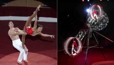 Гомельский цирк представил новое новогоднее шоу