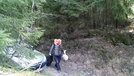 С начала года в лесах Гомельщины появилось 111 новых фотоловушек – любителей выбрасывать мусор должно поубавиться