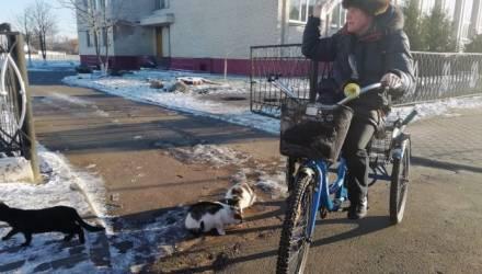 Белорус ездит на веломобиле и кормит котов. Они сбегаются по сигналу