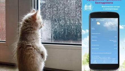 Белорусские учёные создали Android-приложение с прогнозом погоды