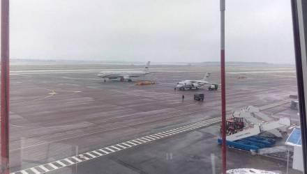 ГТК – о том, когда «Белавиа» сможет ввести беспошлинную торговлю в самолетах