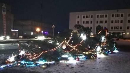 В Червене на площади рухнула главная новогодняя ёлка – видео