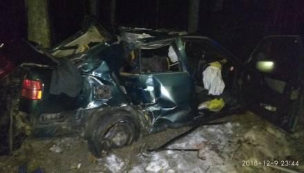 На пути в Гомель... Под Речицей занесло Seat: авто врезалось в дерево, водитель погиб