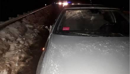 Легковушка сбила насмерть пешехода на гомельской трассе