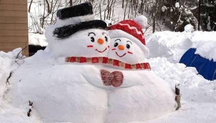 Снежный покров в Гомеле в три раза превысил средние многолетние значения конца января