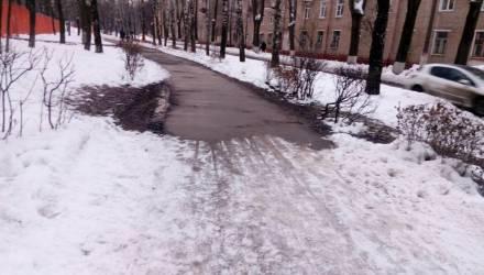 Погодный винегрет. В Гомеле на неделе от -12 и снега до +3 и дождя