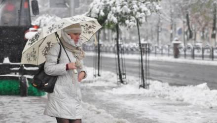 Белстат: в Гомеле средняя зарплата в декабре составила 1035 рублей