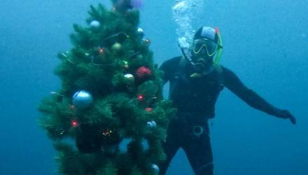 Дайверы установили новогоднюю ёлку на дне Голубого озера