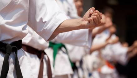 В Гомеле японские мастера обучат каратистов технике поединков