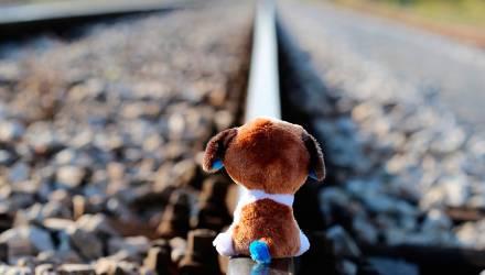 В Гомеле недовольны количеством подростковых суицидов