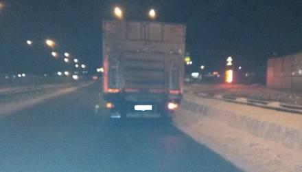 На гомельской трассе грузовик насмерть сбил пешехода, который находился на проезжей части