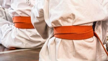 Инструкторы из Японии обучат в Гомеле каратистов из разных стран технике поединков