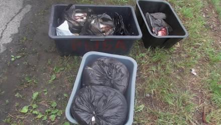 Арендатор или браконьер? В Речицком районе расторгнут договор аренды рыболовных угодий с мужчиной, который незаконно вывез 80 кг рыбы на VW