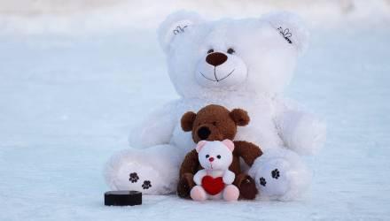 В Ледовом дворце 16 февраля состоится благотворительная акция «Игрушкопад»