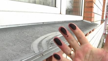 Слой чёрной пыли покрыл окраину Гомеля: жители винят местное предприятие