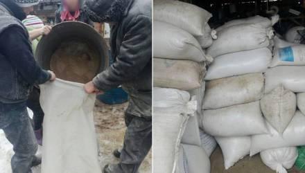 На Гомельщине работники сельхозпредприятия подумали, что наступил коммунизм, и присвоили 19 тонн кормов